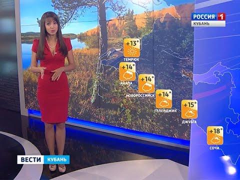 Погода на Кубани в выходные дни останется прежней
