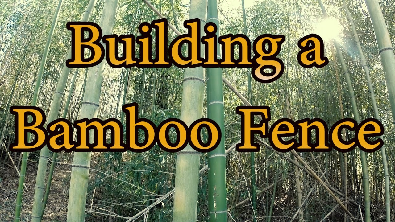 Building a bamboo fence youtube building a bamboo fence baanklon Image collections
