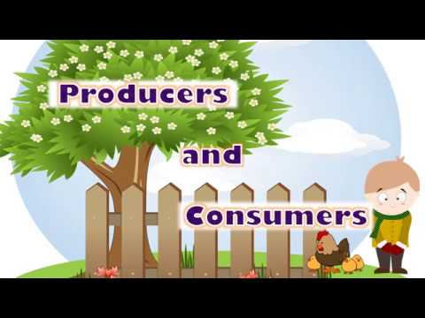 Producers and Consumers; Herbivores Carnivores and Omnivores