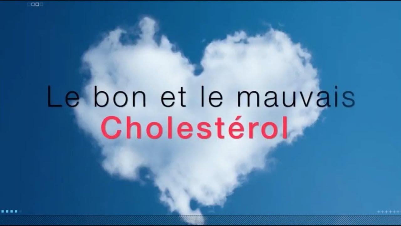 le grand mythe du cholesterol