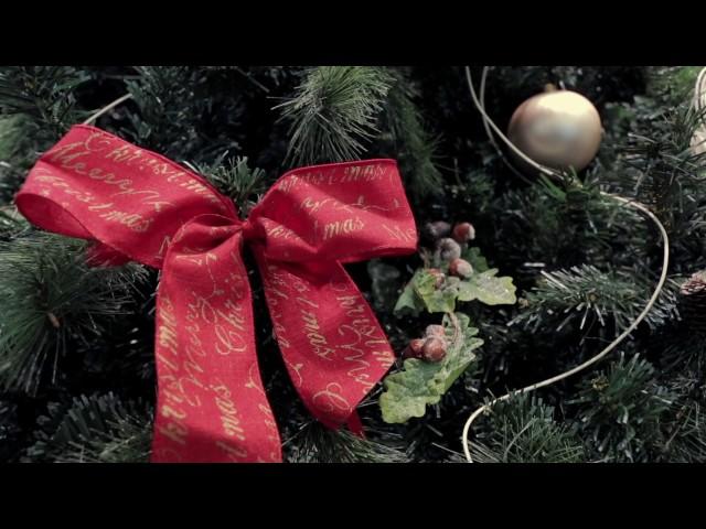 Gli auguri di Buon Natale e Buon Anno da Latterie Vicentine