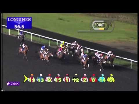 02.02.2013 Meydan (Dubai-UAE) 2.Race Longines Dolce Vita - 1.200 m