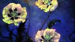 Danza del hada de azúcar - Tchaikovsky de la suite de