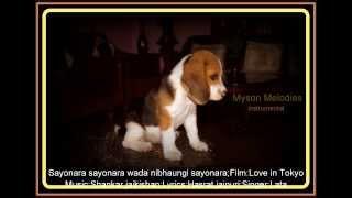 sayonara sayonara - instrumental ;Film:Love in Tokyo