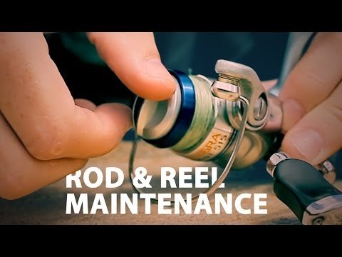 Rod & Reel Maintenance - How to Maintain a Fishing Rod
