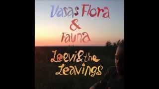 Leevi & The Leavings by Vasas Flora & Fauna