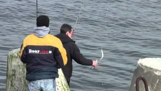рибалка 2010