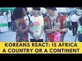 Koreans React: Is Africa a Country or a Continent - 아프리카는 나라인가요, 대륙인가요? | AFROASIA TV