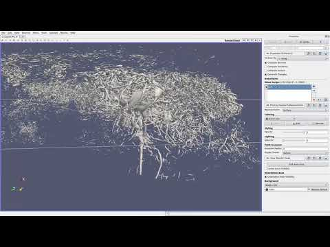 NVIDIA IndeX for ParaView: Real-Time Transfer Function Editing