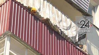 Почему нижнекамка собирает мусор в квартире и обливает двери соседей кефиром