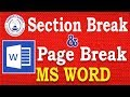 MS Word- Page Break and Section Break in Word Document (Hindi)|Learn MS office and Basic Computer