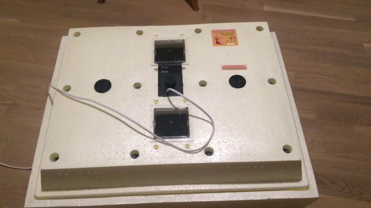 Инкубатор бытовой от 200 грн!. Купить с доставкой по украине в интернет магазине