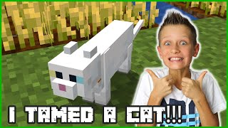 I TAMED A CAT IN MINECRAFT!