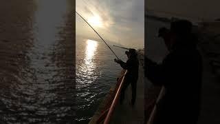 20171223 平磯 カゴ釣りフェスティバル!! で起こったh_n氏のミラクル...