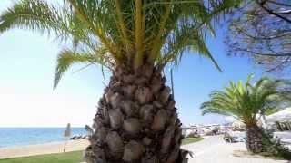 климат в греции видео
