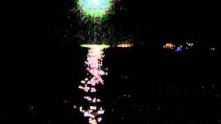 dassia bij maanlicht