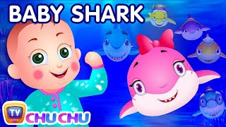 Download Video Baby Shark Song | Sing and Dance | Animal Songs for Children | ChuChu TV Nursery Rhymes & Kids Songs MP3 3GP MP4