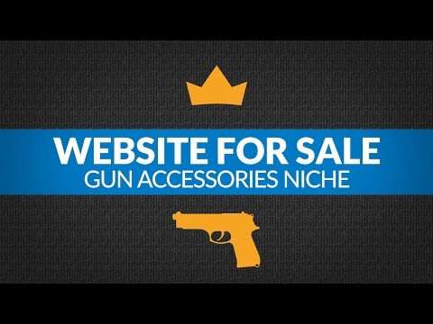 Website For Sale – $2.8K/Month in Gun Accessories Niche, Passive Income Amazon FBA Business