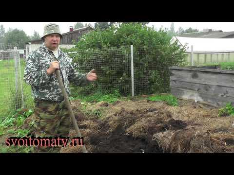 Огородник без органики - это уже не огородник