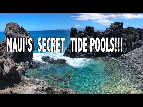 MAUI'S SECRET TIDE POOLS!