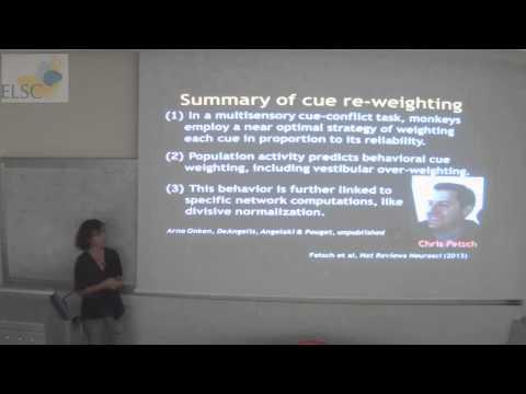 ELSC Seminar: Dora Angelaki