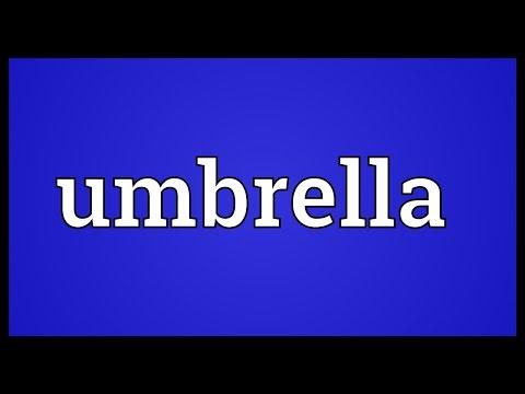 Umbrella Meaning