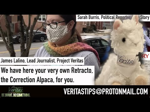 "Raw Story ""Journalist"" Sarah Burris SPEECHLESS When Presented Retracto Plushie By Veritas"