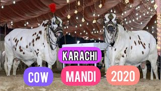 Eid ul Azha in Pakistan 2020 by meems creations