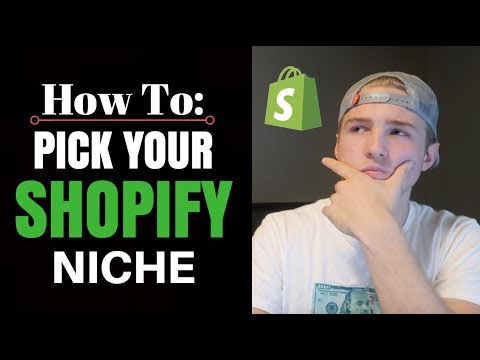 How To Pick Your Shopify Niche (Dropshipping)