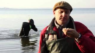 РЫБАЛКА КВОКОМ - ПРИКОЛ(Квок - рыболовная снасть для ловли сома. Один рыболов попробовал освоить этот способ рыбалки. Что из этого..., 2013-08-11T15:07:51.000Z)