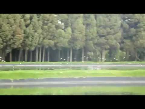 Aerolaser Agrilaser Aeropuerto Bogotá - Patos