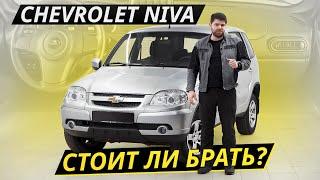 Несколько причин, чтобы продать Chevrolet Niva | Подержанные автомобили