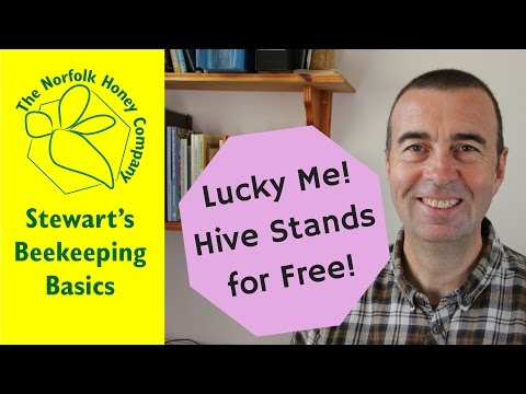 Lucky Me, Beehive Stands for Free! Beekeeping Basics - The Norfolk Honey Co.