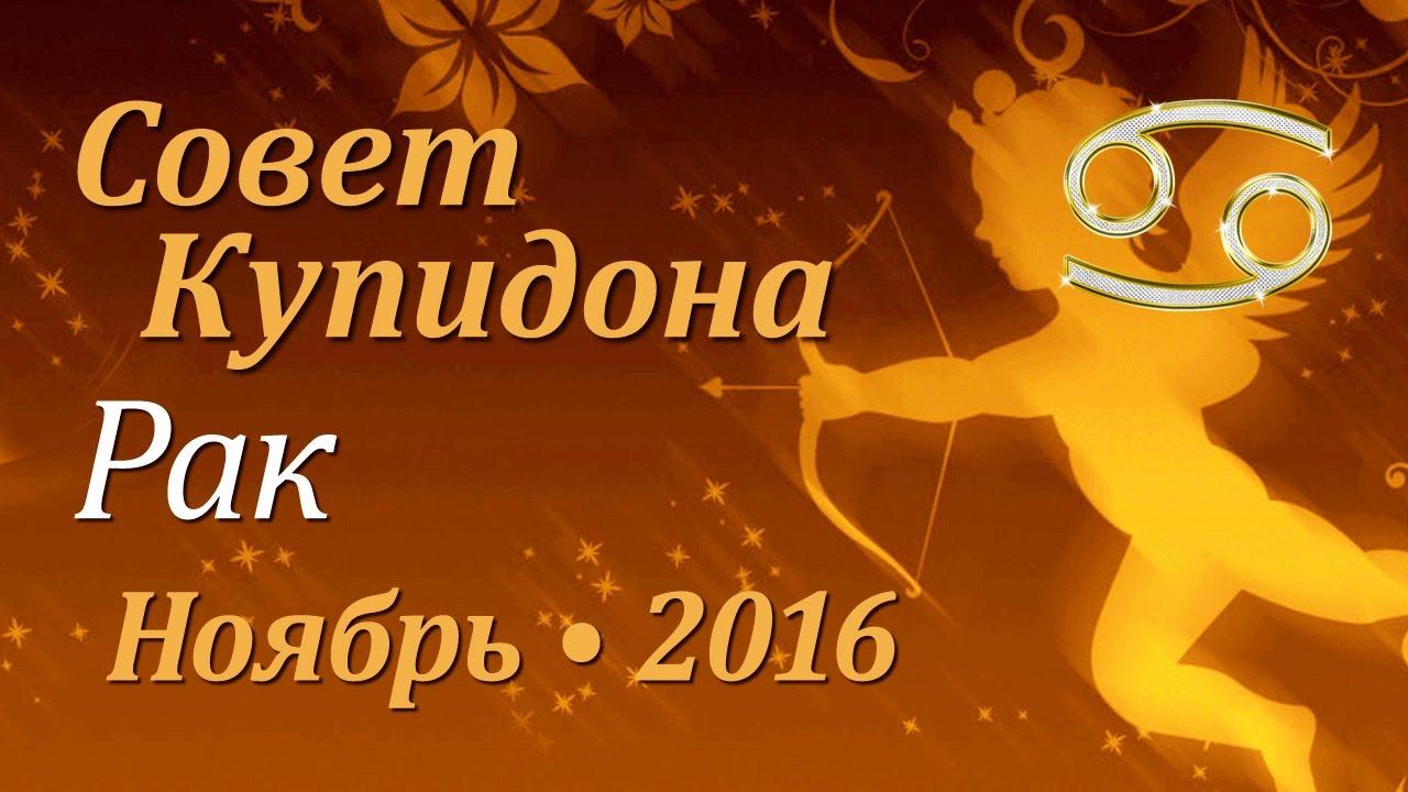 гороскоп на ноября для рака 2016 обзор фирм-производителей термобелья