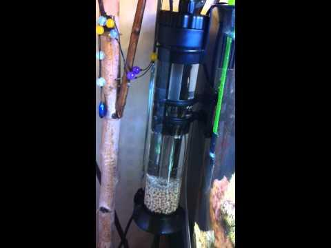 diy recirculating biopellet reactor by igor svinzov