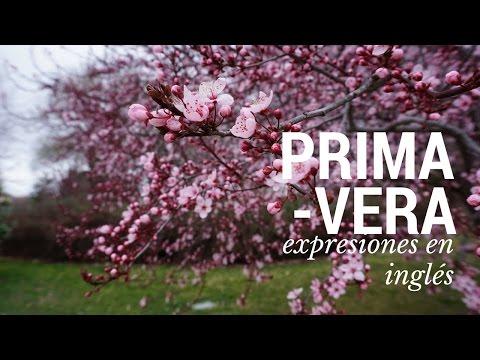 Expresiones para hablar de la PRIMAVERA en inglés (las estaciones) - 동영상