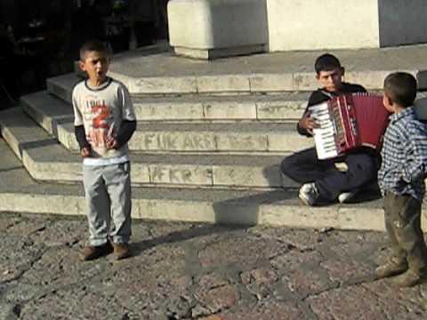 Mali Zbor Uz Harmoniku Pjesma O Zastavi