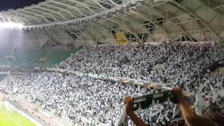 Konyaspor, Shaktar Donetsk maçında uefa müziği eşliğinde sahada...