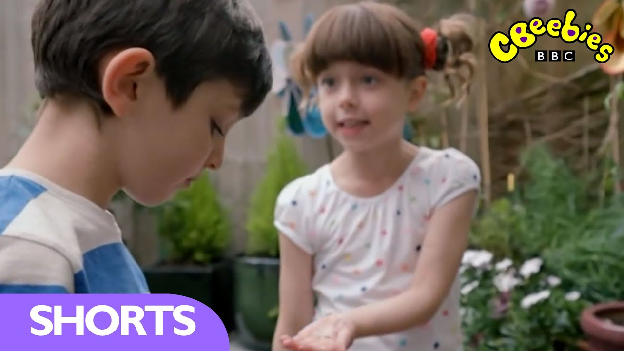 cbeebies topsy and tim remember when planting. Black Bedroom Furniture Sets. Home Design Ideas