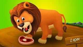 Fun Animals Care Kids Learn Wild Animals Names - Feeding Time Safari Fun Wild Animals Care Kids Game