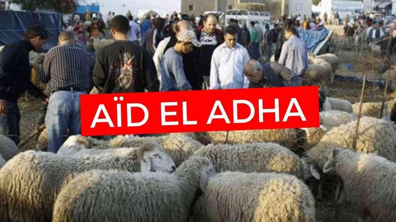Aid El Kebir