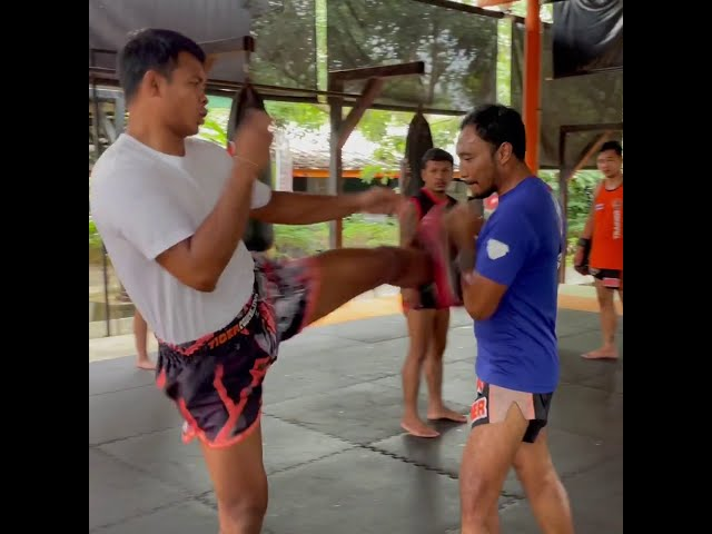 Saksurin kick barrage on the pads @ Tiger Muay Thai