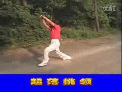 蚌埠孙氏心意六合拳(上)Bangbu Sun Shi Xinyi Liuhe Quan A