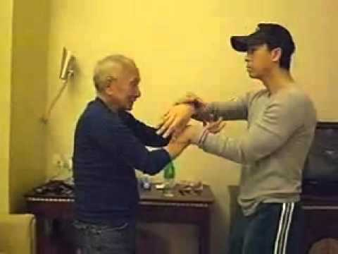 Ip Chun Donnie Yen Chi Sao