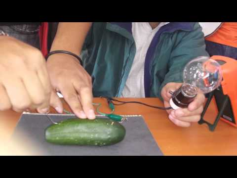 Experimento para prender un foco con un pepino