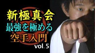 【新極真会】 最強を極める空手入門 第五巻 収録時間:カラー80分 価格...