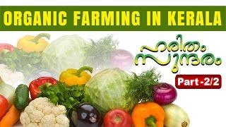 Organic Agricultural farming in Kerala Part 02 | Haritham Sundaram 01-04-2016 | Kaumudy TV