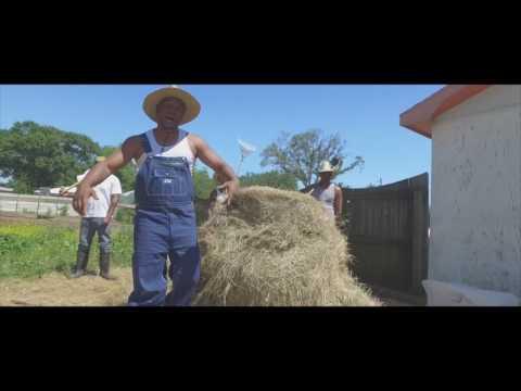 Carlos Slim - 40 Acres and a Mule
