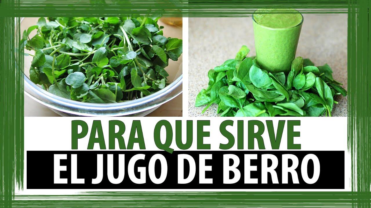 PARA QUE SIRVE EL JUGO DE BERRO | PROPIEDADES DEL JUGO DE