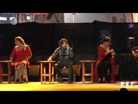 Noche Blanca del Flamenco 2017